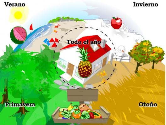 Juegos alimentación educación primaria y secundaria.