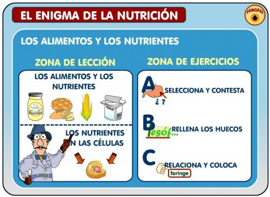 El enigma de la nutrición - pantalla