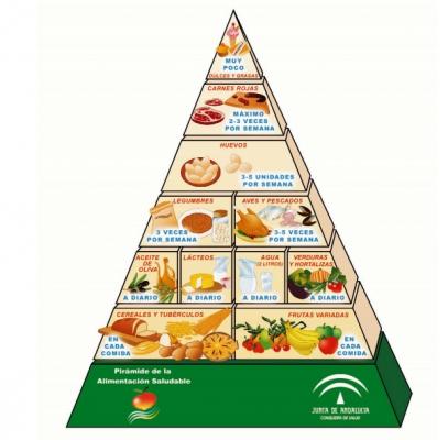 Libro de La alimentación de tus niños y niñas