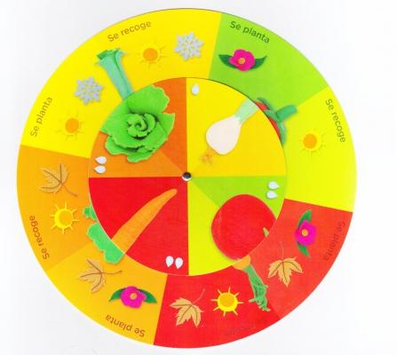 Libro y juegos alimentación primaria
