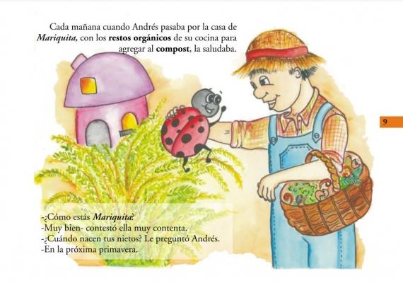 Mariquita en la huerta orgánica