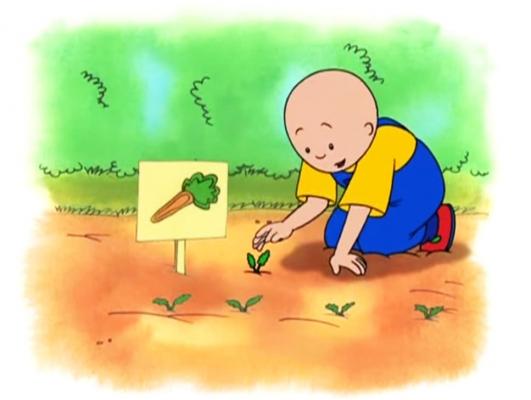Vídeos alimentación educación infantil y primaria