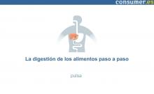 Infografía La digestión de los alimentos