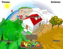 juegos online Frutas y estaciones del año